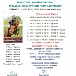 rOLESTOWN Show Jumping LEAGUE 2016