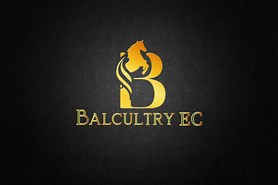 Balcultry Stables, Swords, Co. Dubin